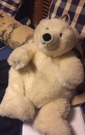 The bear himself